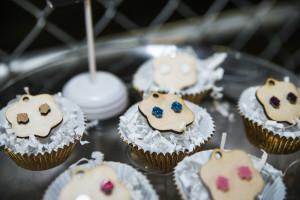 rawvisionary_cupcakes2